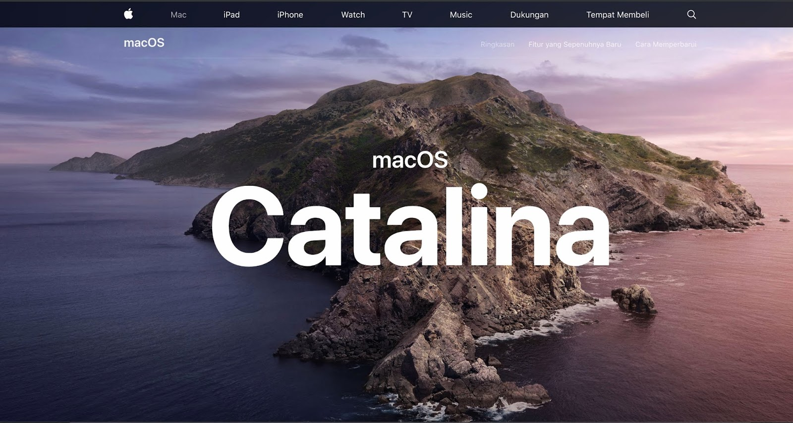 uTorrent для Mac OS Catalina