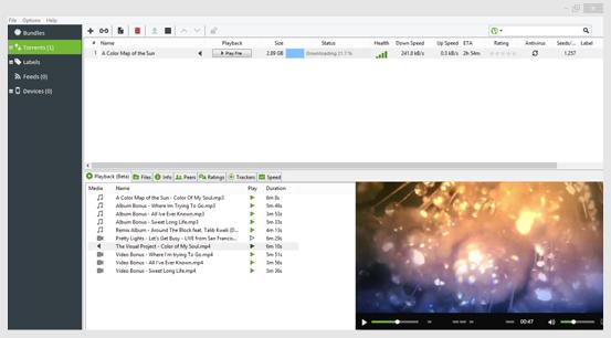 Возможности популярного торрент-клиента Utorrent Pro